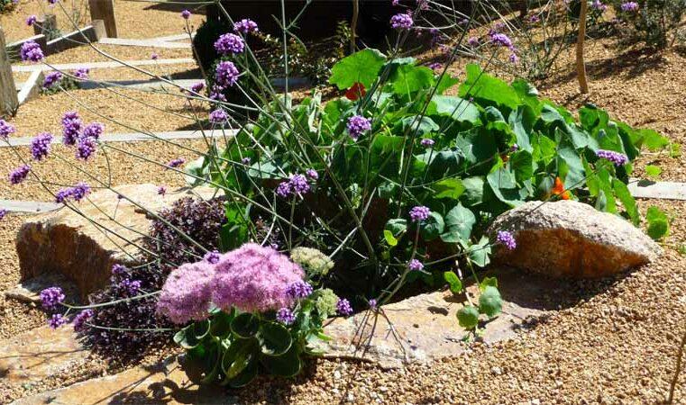 jardin en espaliers