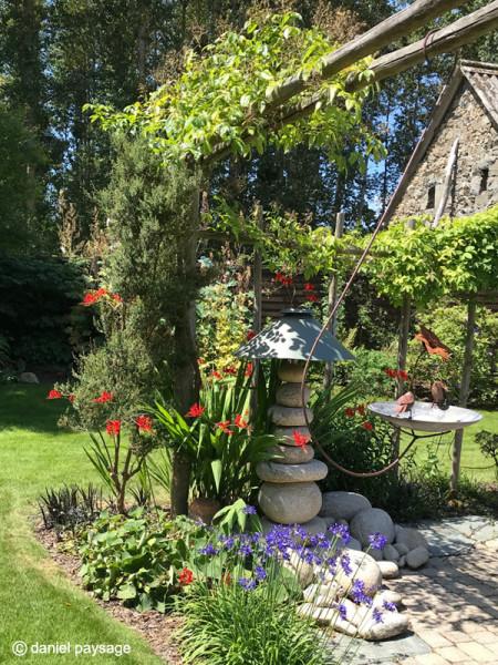 lampe-galets-pergola bois-akebia-agapanthe-rosier-plante grimpante